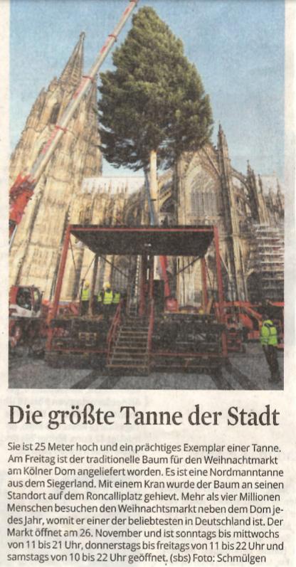(Deutsch) KSTA: Die größte Tanne der Stadt